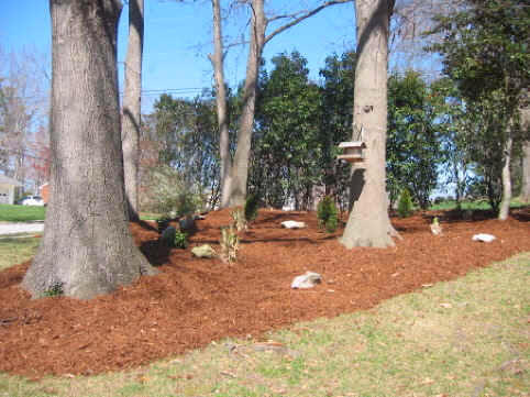 Area mulch and soils raleigh wake forest nc mulch delivery for Landscaping rocks wake forest nc